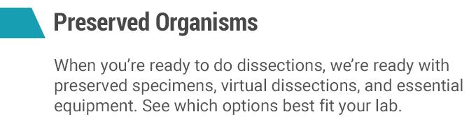preserved organisms