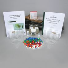 C-FERN Asexual and Sexual Reproduction Kit (with Perishables)