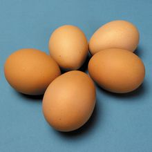 Chicken Eggs, Fertile, Unit of 12