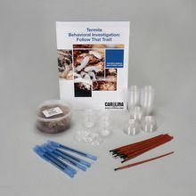 Termite Behavioral Investigation: Follow That Trail! Classroom Kit