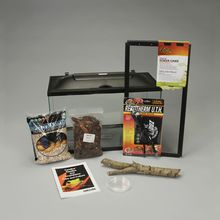 Small Lizard Habitat (with prepaid coupon)