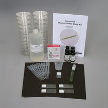 Algae and Photosynthesis Study Kit