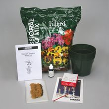 Carolina® Nitrogen-Fixation Study Kit (with perishables)