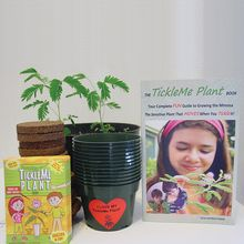 TickleMe Plant Classroom Kit