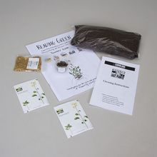 Reading Green™: Investigating the Life Cycle and Growth of Flowering Plants Kit Refill