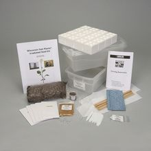 Wisconsin Fast Plants® Irradiated Seed Kit