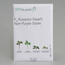 Wisconsin Fast Plants&reg; F<sub>2</sub> Rosette-Dwarf, Non-Purple Stem Seed (F<sub>2</sub> Rosette, Anthocyaninless), Pack of 250