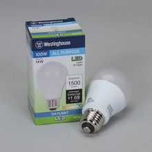 Replacement LED Light Bulb, 14 W