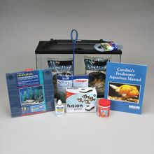 Aquarium Kit, Basic Freshwater