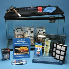 Aquarium Kit, Showcase Freshwater