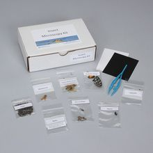 Insect Observation Materials Kit