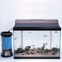 Marine Aquarium Kit, Deluxe, 20 gal, with Animals