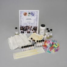 DNALC Forensic DNA Fingerprinting Kit with GelGreen™ - Perishables Refill