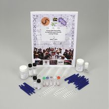 DNA Barcode Amplification Kit (with perishables)