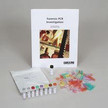 Forensic PCR Investigation Amplification Kit (with prepaid coupon)