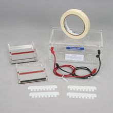 Carolina® Gel Electrophoresis Chamber Set