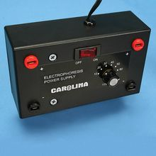 Carolina Electrophoresis Power Supply