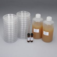 Luria Broth Agar + Ampicillin + X-gal Ready-to-Pour Media Set