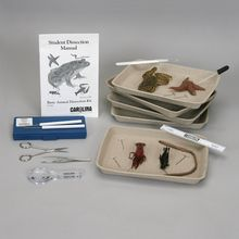 Basic Animal Dissection Kit