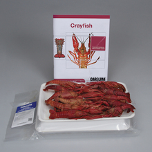 Carolina® Crayfish Dissection BioKits®