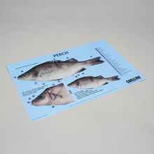 Carolina® Perch Dissection Mat
