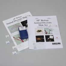 Animal Diversity Microscope Slide Sets for AP® Biology