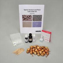 Typical Animal and Plant Cells Slide Kit