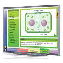 Multimedia Science Lessons for Interactive Whiteboards: Mitosis