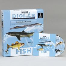 Carolina® Bio Lab®: Fish CD-ROM, Lab Pack (10)
