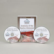 The Glass Horse: Anatomy of the Equine Abdomen CD-ROM