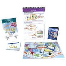 Chromosomes Curriculum Learning Module