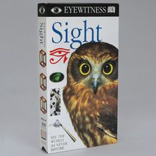 Eyewitness Video: Sight