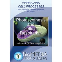 Visualizing Cell Processes: Photosynthesis and Cellular Respiration DVD