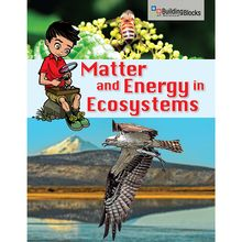 Building Blocks of Science Literacy Series™: Matter and Energy in Ecosystems Below-Grade Reader, Pack of 6
