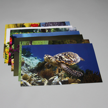 Photo Card Set, External Structures