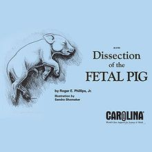Carolina eBook: Dissection of the Fetal Pig
