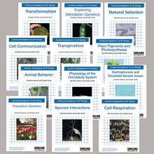 Carolina Investigations® for AP® Biology: Digital Teacher's Manual Package