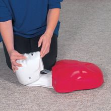 Life/form® Basic Buddy® Single, CPR Manikin