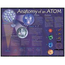 Anatomy of an Atom Poster