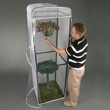 Butterfly Display Cage