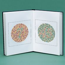 Ishihara Color Vision Test, Concise Edition