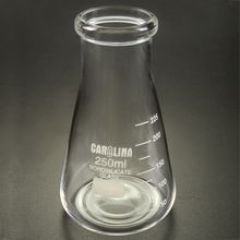 Carolina® Standard-Grade Widemouthed Erlenmeyer Flask, 250 mL, Pack of 12