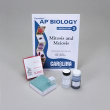 Mitosis and Meiosis 8-Station Replacement Set (with perishables)