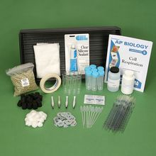 Cell Respiration 8-Station Kit