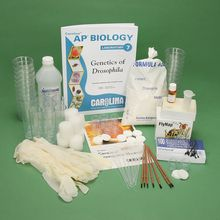 Genetics of Organisms: Genetics of Drosophila Kit (with prepaid coupon)