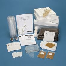Genetics of Plants Kit
