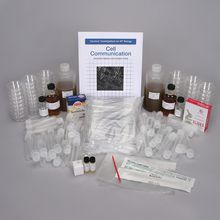 Carolina Investigations® for AP® Biology: Cell Communication 1-Station Kit (with perishables)