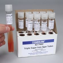 Triple Sugar Iron Agar, Slant, Prepared Media Tubes, Pack of 10