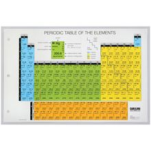 Carolina® Student Infographic Periodic Table