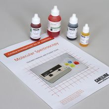 Carolina Investigations® for AP® Chemistry: Molecular Spectroscopy